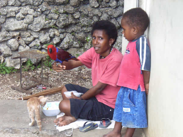 A lady sitting down holding a brightly coloured parrot, a small boy is standing next to her and a cat is sniffing around